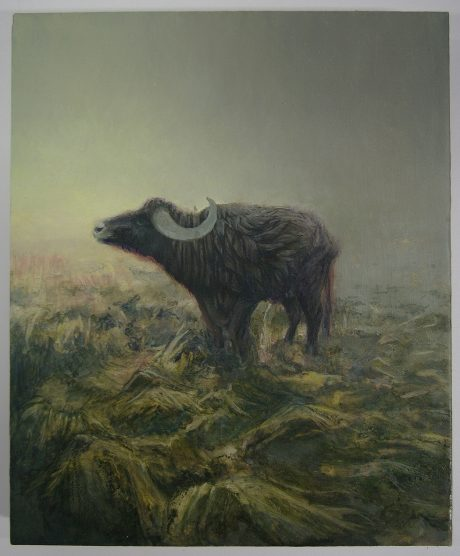 Bull, 2014 // 190 x 230 mm // Oil on Board